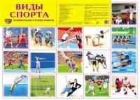 Демонстрационный плакат. Виды спорта